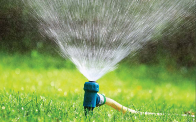 Rural Counts Spring Webinar: The Master Plan for Water and Wastewater Infrastructure