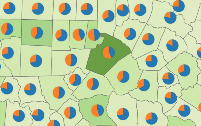 County Residents' Place of Birth: In-State or Out-of-State
